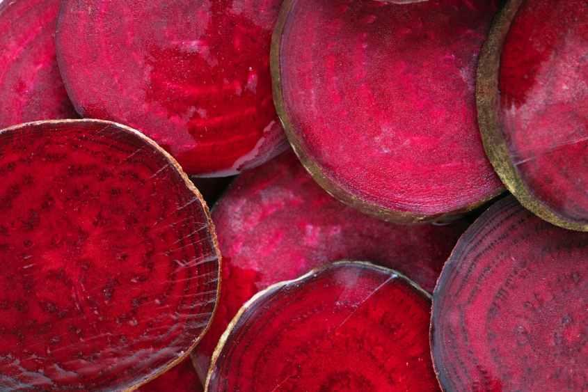 Beterrabas contêm grandes quantidades de ácido fólico